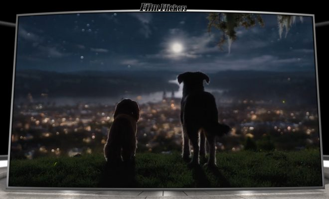 Image of Lady and the Tramp looking out into the city skyline