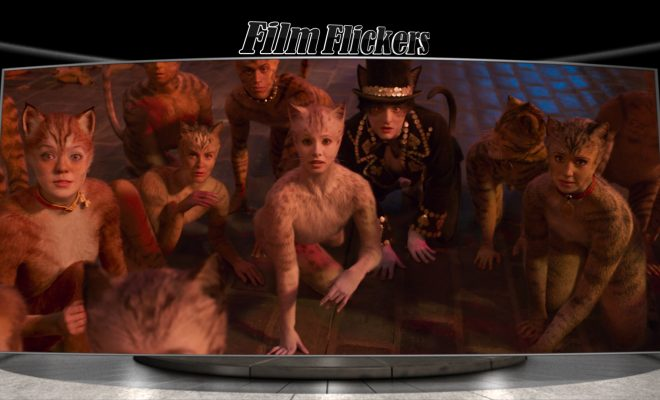 Image of cast of Cats squared down looking towards camera