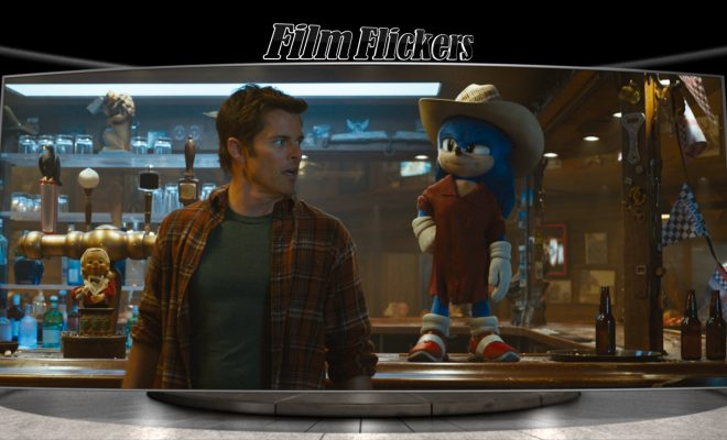 Sonic wearing a cowboy hat and poncho standing next to James Marsden