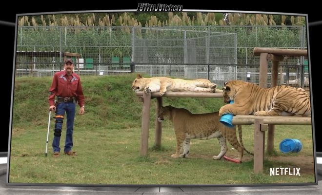 "Image of a scene from ""Tiger King"" showing Joe Exotic holding onto a cane, next to 3 tigers hanging out in their 'play ground'"