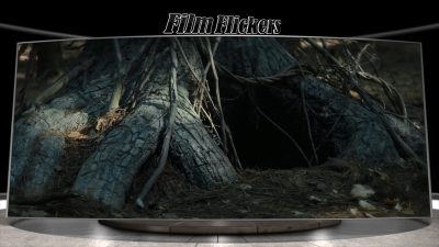 "Image of a scary looking hold under tree in the woods from the film ""The Wretched"""